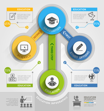 demographics: Education timeline infographic template. Vector illustration. Can be used for workflow layout, banner, diagram, number options, web design.