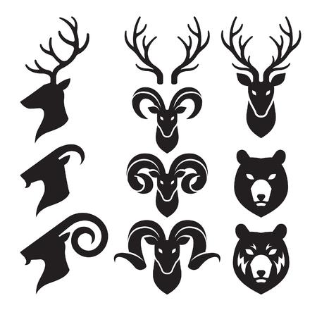 동물의 뿔과 머리 아이콘을 설정합니다. 염소, 사슴과 곰. 일러스트