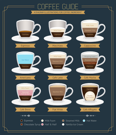 food: Coffee  Guide Diagram. Vector Illustrations.