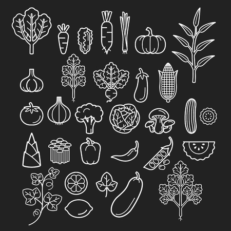 lemon grass: Vegetables icons. Illustration