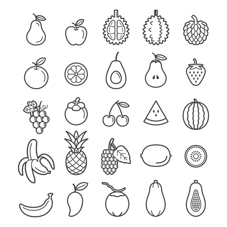 kiwi fruit: Fruits Icons. Illustration