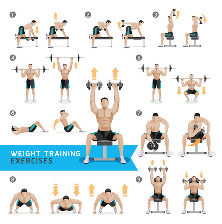 Dumbbell Exercises and Workouts WEIGHT TRAINING. Vector Illustration. Vettoriali