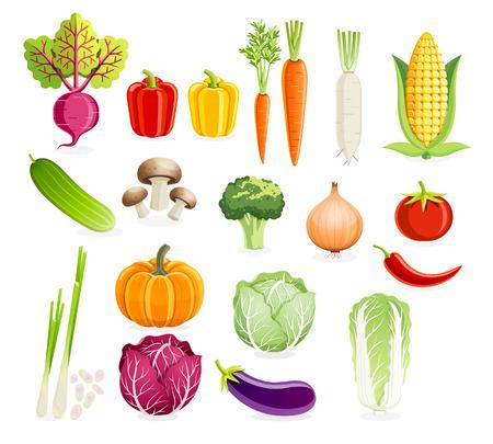 Set of vegetables. Vector illustrations. Illustration