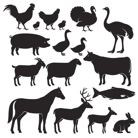 food: Farm animals silhouette icons. Vector illustrations Illustration