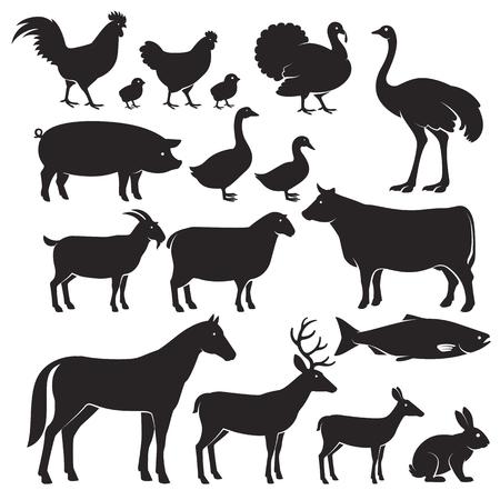 cabra: Los animales de granja silueta de iconos. Ilustraciones del vector