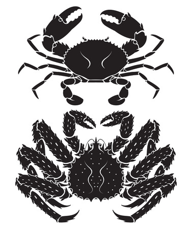 cooked meat: Alaskan king crab. Vector Illustrations. Illustration