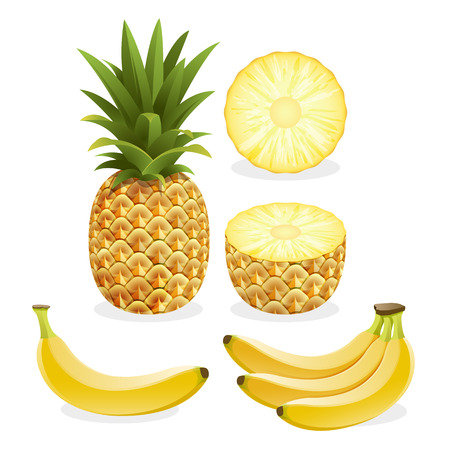 Pineapple and banana fruit. Vector illustration. Illustration