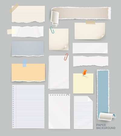 sheet of paper: Group of torn papers.
