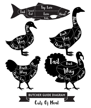 meats: Butcher guide diagram for cuts of meats. Illustration