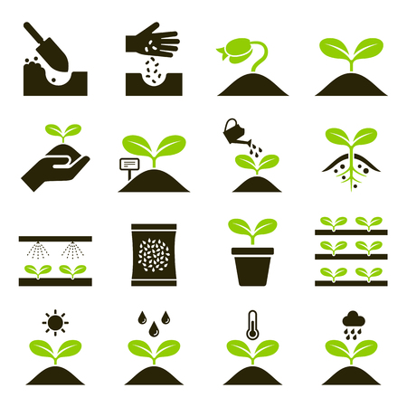 Plant icons. Vector Illustrations. Çizim