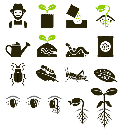 Plant icons. Vector Illustrations. 向量圖像
