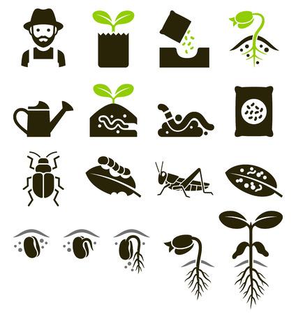 Plant pictogrammen. Vector illustraties. Stock Illustratie