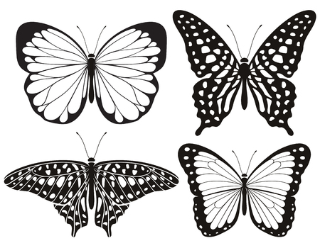 Butterfly silhouette icons set. Vector Illustrations. 向量圖像