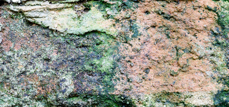 Green moss covered stone texture, background