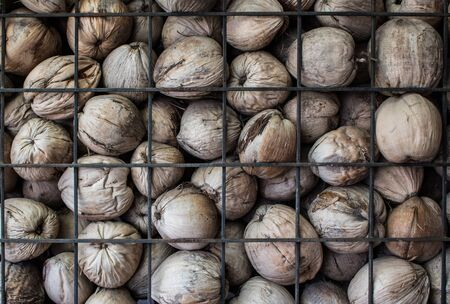 Many dried coconut spathe with partition steel grating texture. Abstract background