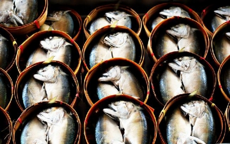 Thai mackerel photo