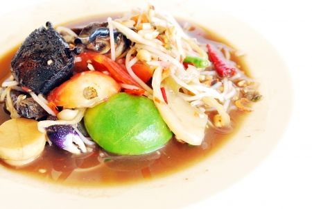 Green Papaya Salad with pickled fish and noodle,from North East in Thailand Stock Photo - 15339918