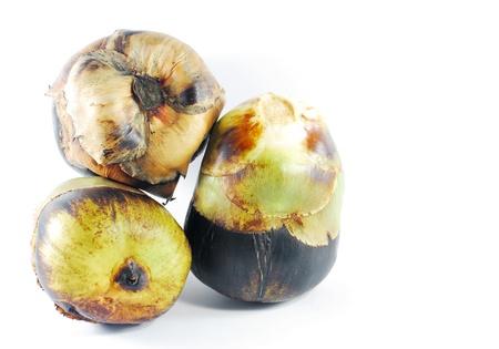 cambodian palm: Asian Palmyra palma, Toddy palma, zucchero di palma, palma cambogiano