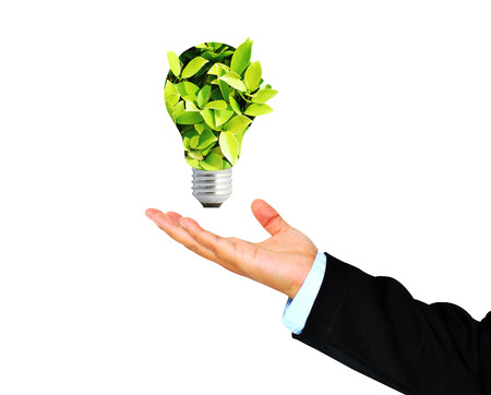 receives: Business Hand receives Green bulb,environment concept