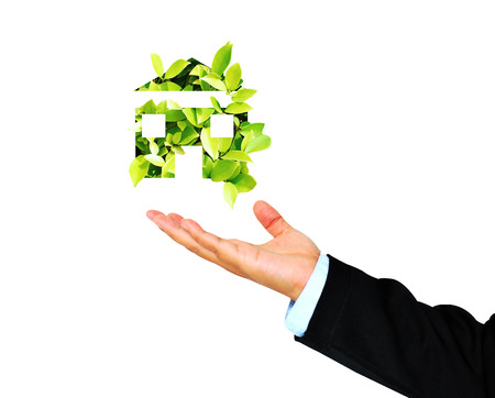 receives: Business Hand receives Green House,environment concept