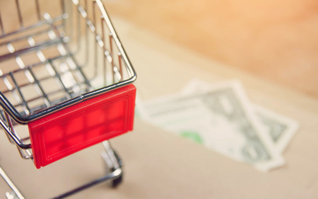Shopping cart with money on vintage style