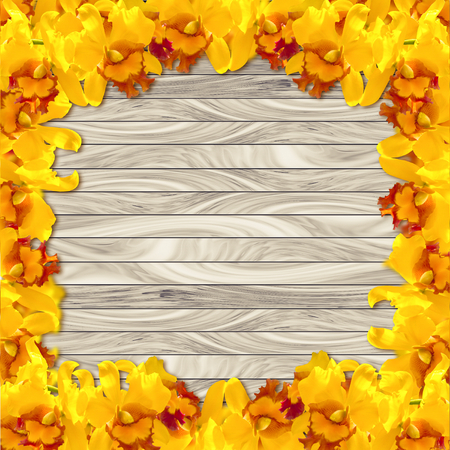 abstact: Abstact Yellow orchid on wood plank background