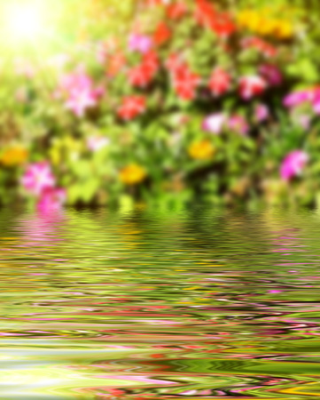 rippled: Beautiful surface rippled of water and blur nature background
