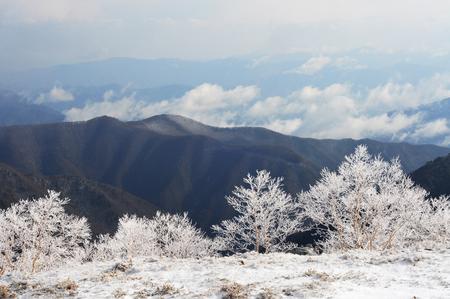 japan: Japan Alps landscape in winter in Nagano, Japan Stock Photo