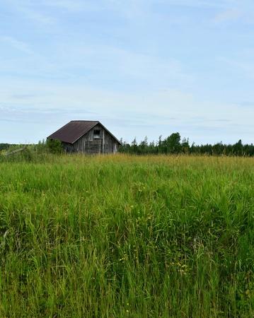 キャビンの日当たりの良い夏の草原に