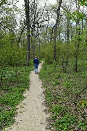 Anonymous woman walking on wooded path