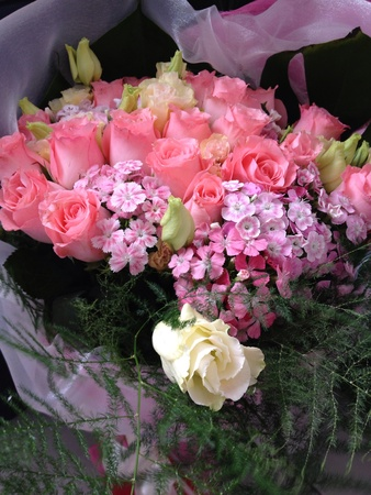 nose: A beautiful bouquet of pink roses on gray background