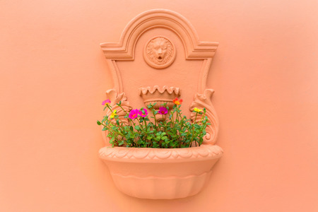flower pot on the orange wall photo