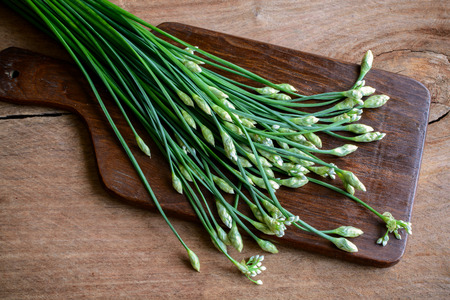 tuberosum: Garlic chives or Allium tuberosum on wooden table background