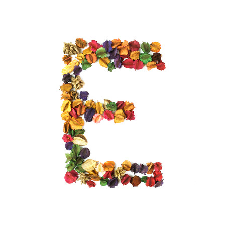 e pretty: E, Dried flower alphabet isolated on white background Stock Photo