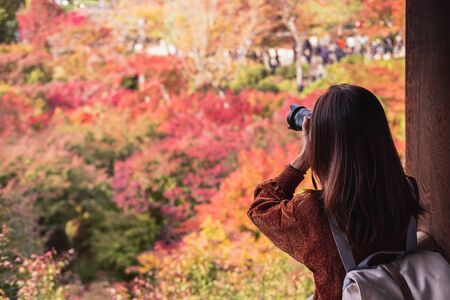 Young woman traveler looking and photographing beautiful autumn in Japan, Travel lifestyle concept Archivio Fotografico