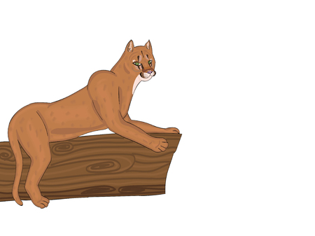 A Vector tribute with transparent background of an Eastern Puma that has gone extinct in America