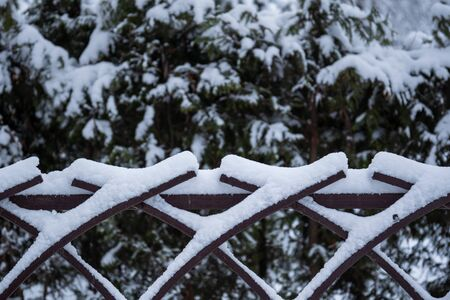 The fence on which snow lies against a background of winter snowy bushes in the park