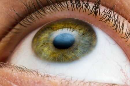 oeil masculin de gros plan de couleurs jaune, vert et bleu