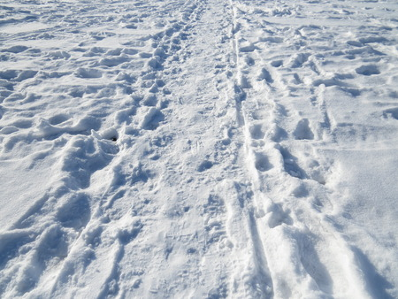 deep powder snow: Hotfoot in the snow, which shows many traces. Stock Photo
