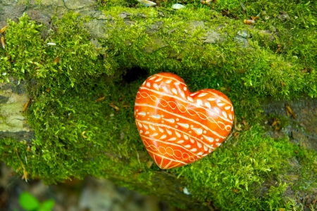 cordiality: red Heard on moss Stock Photo
