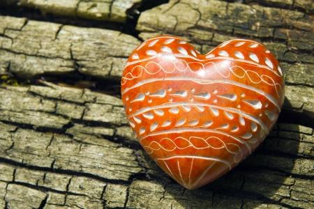 heartiness: red Heard on tree bark