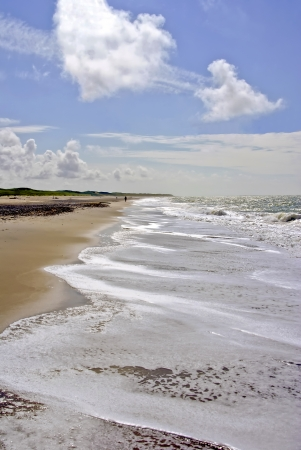 coastline  - The coastline at the north sea in Denmark   Stock Photo