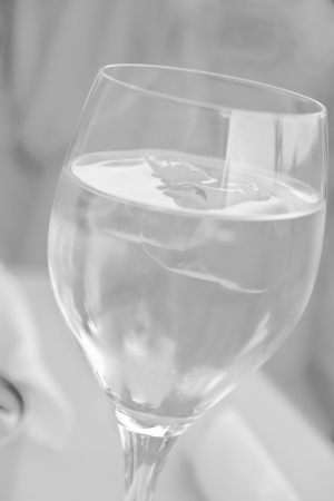seltzer: Water glass - A glass with water and ice cube