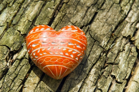 Red Heart - A red heart on tree bark  photo