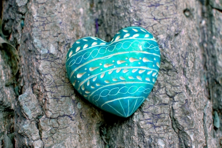 Red Heart - A red heart on tree bark