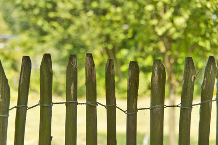 demarcation: Nature Fence - A natural fence of sweet chestnut.
