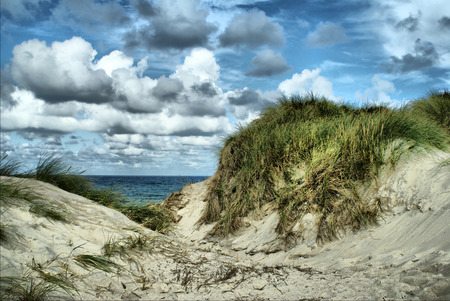 Rough North Sea Landscape - A dune landscape in Denmark on a windy summer day  Stock Photo