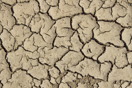 loamy: Loamy Ground - A desiccated puddle along a dirt road Stock Photo