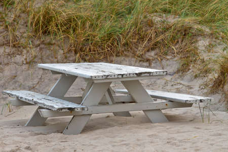 Bench in the dunes at the north sea coast in Denmark