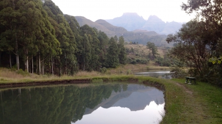 reflective: Reflective mountain lake Stock Photo